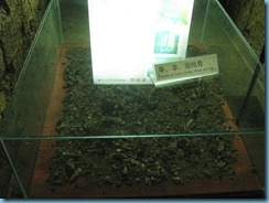 Museum of Nan yue king 047