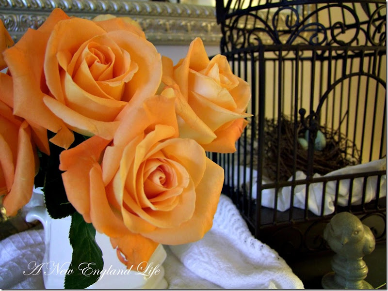 roses bird cage