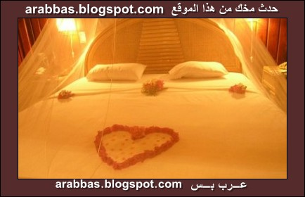 كيفية تقبيل الفرج http://arabbas.blogspot.com/2009/11/blog-post_7247.html