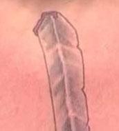 Кадр дня: фрагмент татуировки Брока Леснара