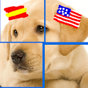 Spanish & Puzzles USA: Animals icon