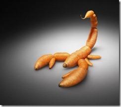 Németország nem kér_GMO répa