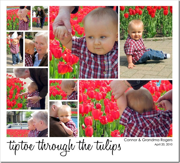 Tiptoe through the tulips w-Grandma Rogers  04.20.10