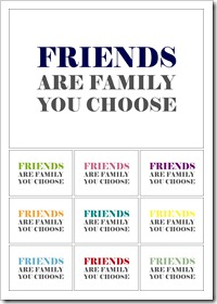 02 image - friends are family you choose