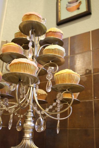 Cupcakes 067