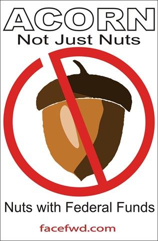 [acorn-nuts[4].jpg]