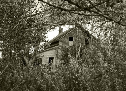 oldhouseinwoods