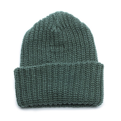 Chunky Knit Cap - Evergreen.jpeg