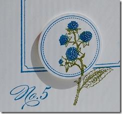 Blue Raspberry (1)