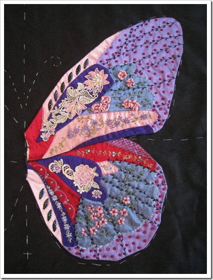 Butterfly Wing 11