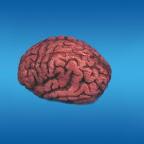 Brain Bloody