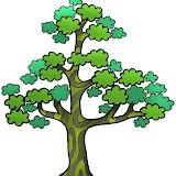 árbol 7.JPG