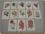 Westminster cards - 13 kartu