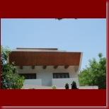 prabhas album-57_t