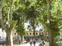 Jardim do Marquês.6