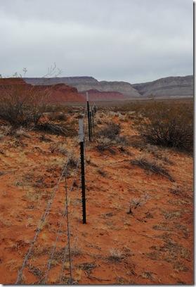 dinasaur tracks 093