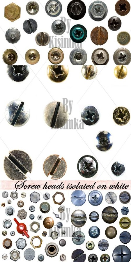 Stock Photo: Screw heads isolated on white