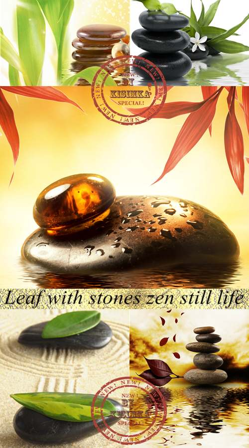 Stock Photo: Leaf with stones zen still life