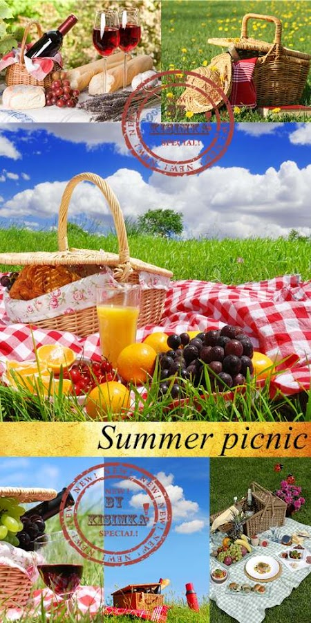Stock Photo: Summer picnic