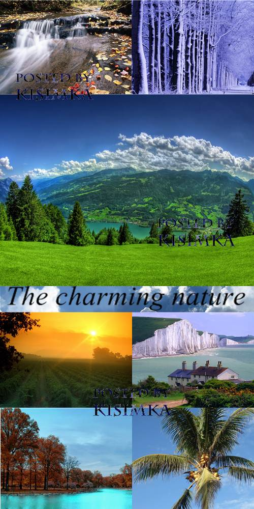 The charming nature. Wallpapers