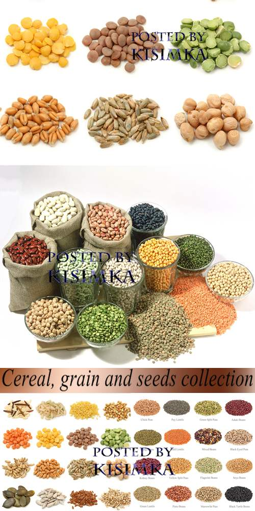 Stock Photo: Cereal, grain and seeds collection
