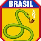 pythonbrasil.jpg