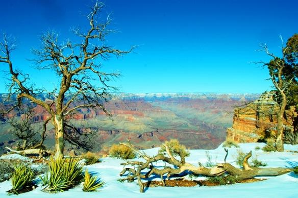 Grand Canyon 047