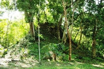 Tikal 039