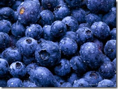 blueberries_lancastria
