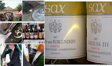 View Dobřichovické vinařské slavnosti 2009 - zbývající fotky