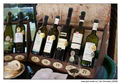 Salon vín Chardonnay