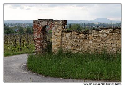 Zídka u vinice s výhledem na známý kopec