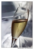 champagne noir film