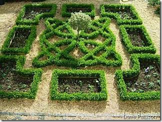 knot_garden dave pattison