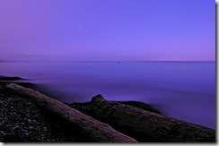 flickr purple haze coastal mist-ery