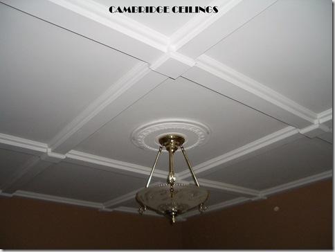 Cambridge Ceilings 2