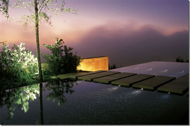 negative-edge-swimming-pool_5 ASLA