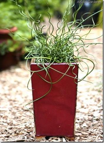 artistic gardener