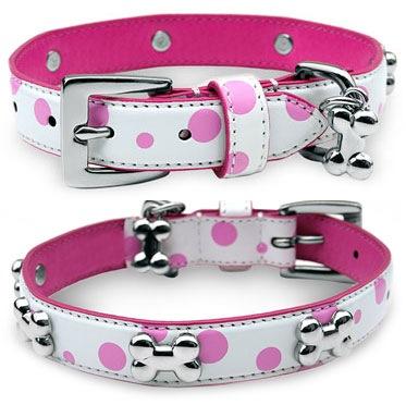 Pinkpolkadot collars mr mrs dog