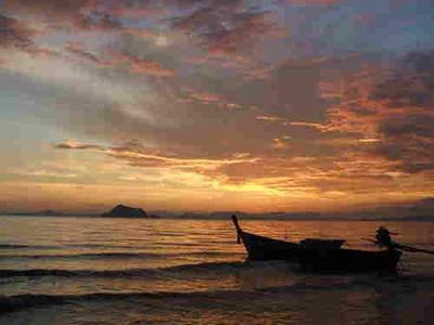 صور بوكيت تايلند