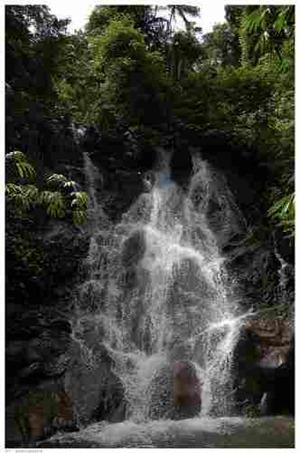 صور فوكيت تايلند