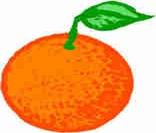 Orangeبرتقال