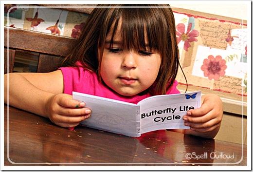 butterflybook