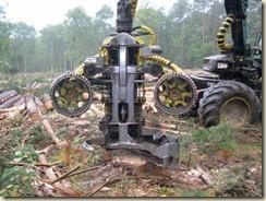 Timberjack (1)