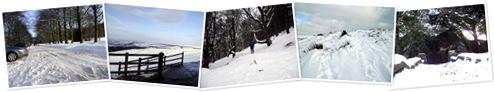View A run round Narnia!
