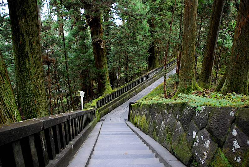 Stone path through an old forest of tall trees in Nikko