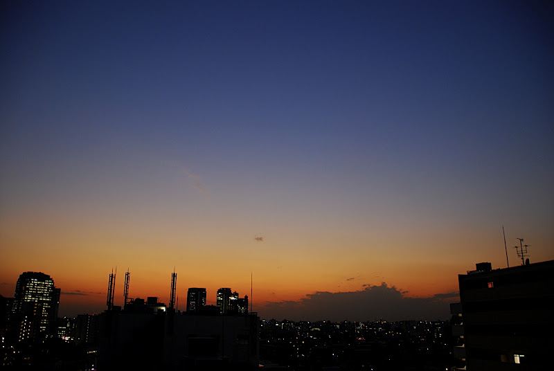 Fall produces some of the best dusk skies in Shinjuku