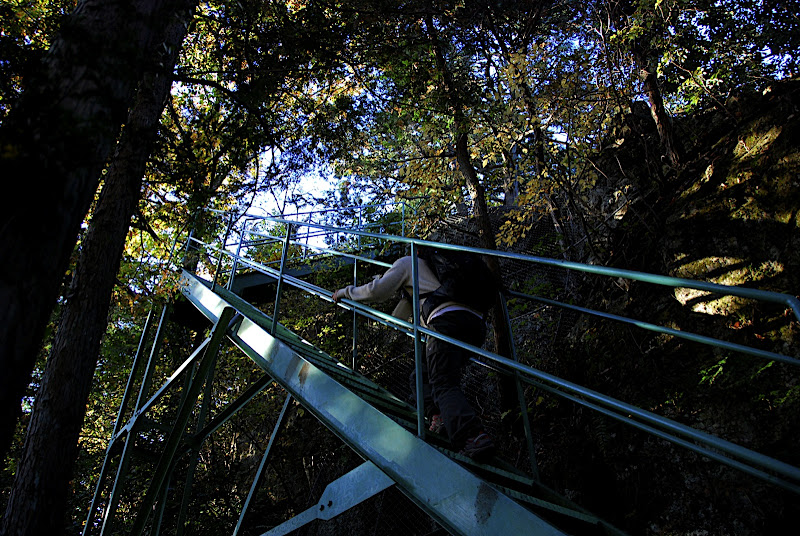 All of a sudden in the middle of nature a steep metal staircase arose.