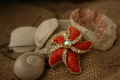 Beach House Living(tm)vintage  coral crystal starfish pin 2-2010