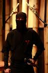 real ninjas, honest